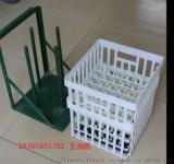 345*350*400塑料種蛋筐 塑料種蛋筐報價