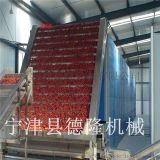 德隆厂家定做中草药烘干机 金银花 菊花烘干设备 红枣农产品干燥机