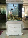 怡和水族免換水生態魚缸