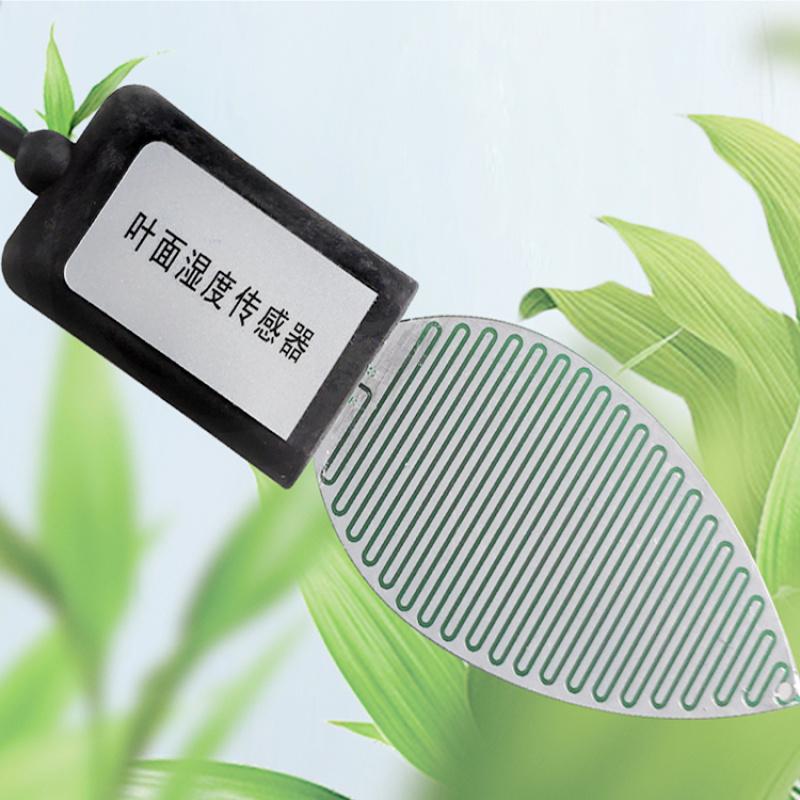 叶面湿度传感器 叶片湿度变送器