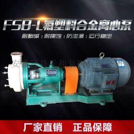 氟塑料离心泵FSB型耐腐蚀四氟泵 耐酸碱化工泵