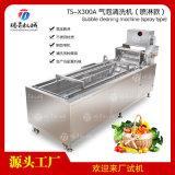 不锈钢自动洗菜机洗果机TS-X300A
