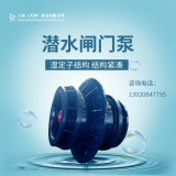 45KW潛水閘門泵供應商/生產廠家