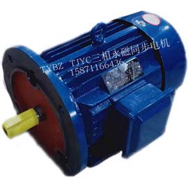 交流永磁同步電機TYBZ80M-2/1.1KW電機