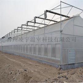 专业配备连栋薄膜温室温室骨架连栋玻璃温室材料