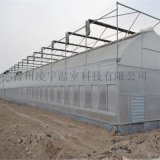 專業配備連棟薄膜溫室溫室骨架連棟玻璃溫室材料