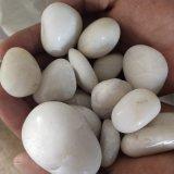 山西白色卵石   永顺雪花白卵石供应商