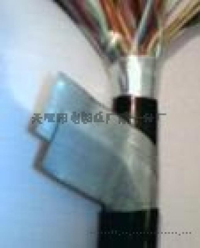 阻燃铠装通信电缆ZR-HYA23电缆