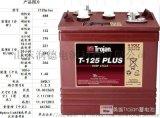 合肥T-105 美国邱健蓄电池6V225AH观光车蓄电池