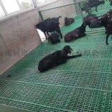 純原料羊用漏糞地板羊場專用塑料漏糞板雙筋加厚羊牀