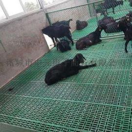 纯原料羊用漏粪地板羊场  塑料漏粪板双筋加厚羊床