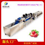 果蔬清洗風乾分選大型生產線(A)
