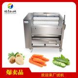 毛刷式洗姜机,萝卜清洗土豆去皮机