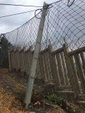 安徽被動邊坡防護網 sns被動防護網