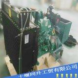 东风康明斯柴油发电机组 4BTA3.9-G2柴油机