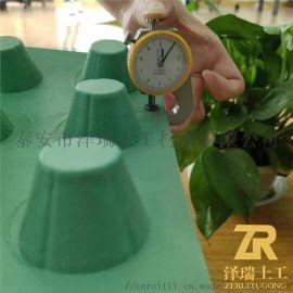 西安3公分屋面种植塑料排水板/塑料疏水板优势
