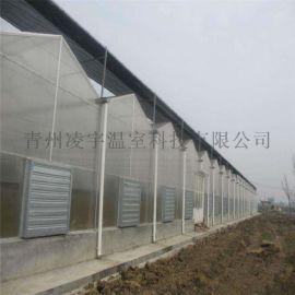 新型阳光板温室建设阳光板玻璃温室工程项目