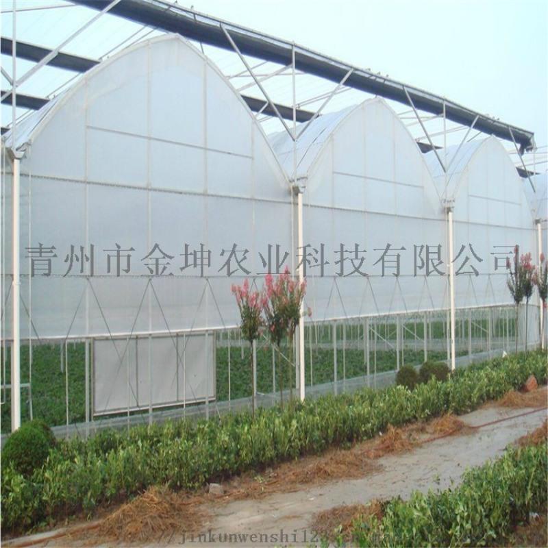 连栋薄膜温室承建 薄膜温室大棚造价