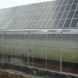 陽光板連棟溫室大棚建設 陽光板溫室大棚服務
