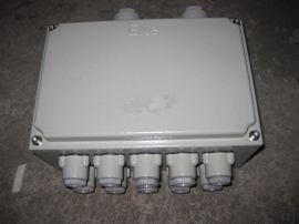 防爆分线箱 ExdeIIBT4 IP65