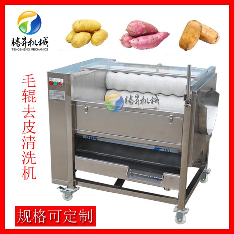 红薯/地瓜去皮清洗机,毛辊清洗机厂家直销