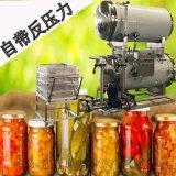 豆漿高溫殺菌鍋 水果罐頭真空殺菌設備
