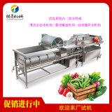 连续式蔬菜清洗机,涡流洗菜机厂家直销
