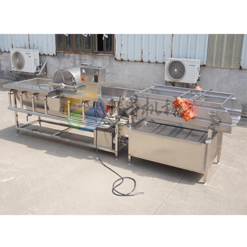 中央厨房涡流洗菜机,大型蔬菜瓜果清洗机