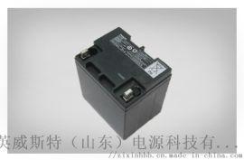 松下EPS/UPS蓄电池 免维护铅酸蓄电池24Ah