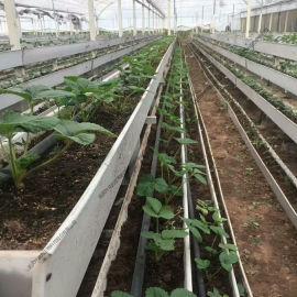 大型连栋温室 无土栽培 草莓种植大棚