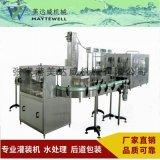 食用油灌装机,定量灌装机,液体灌装机