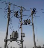 SVR-10KV戶外高壓饋線調壓器廠家