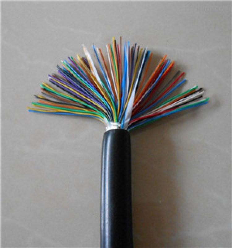 DJFFP22 耐高溫計算機電纜   電纜