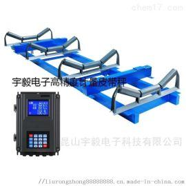 昆山、苏州、上海电子悬浮式皮带秤