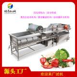 大型涡流洗菜机 火龙果清洗机 中央厨房洗菜机