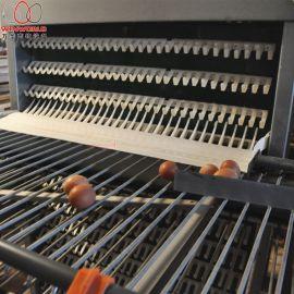 全自动养鸡设备三层商品蛋  笼