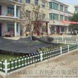 pvc装饰护栏 武汉草坪护栏