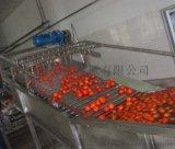 50-500L/果蔬加工生產線
