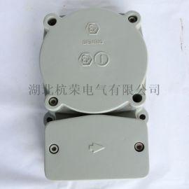 井筒开关C25315-A40-A1磁性防爆