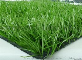 湖南张家界人造草坪笼式足球场人造草坪厂家无毒环保