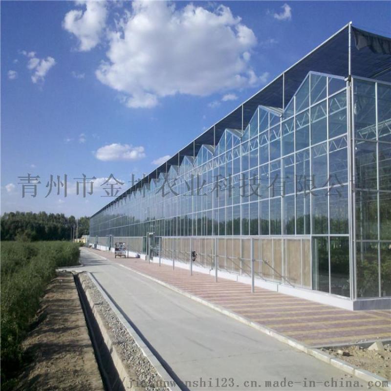 玻璃温室大棚建设 玻璃温室大棚设计