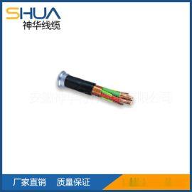 交联聚乙烯绝缘变频器专用电缆