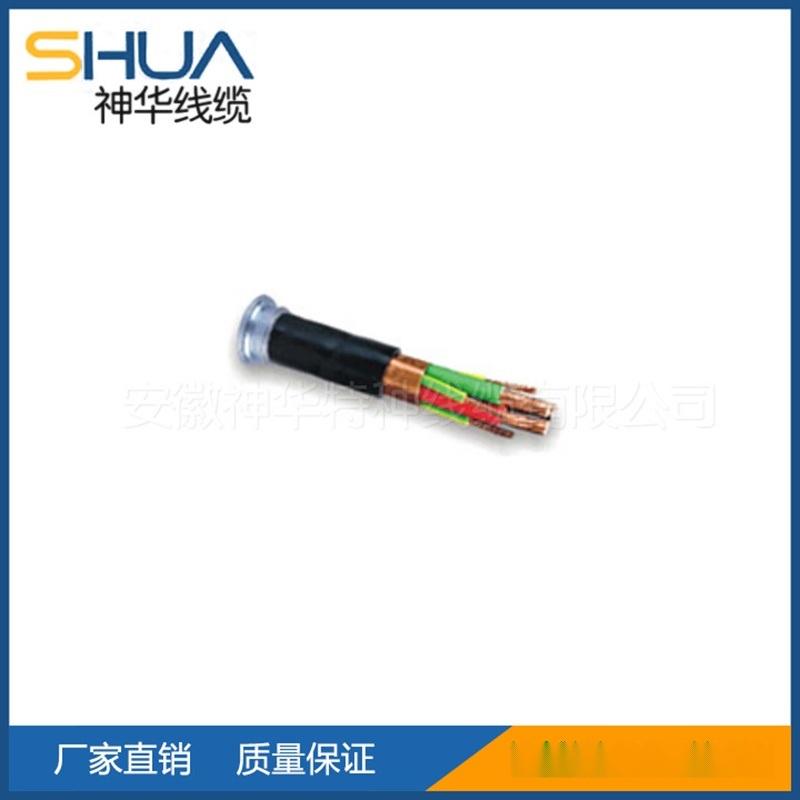 交联聚乙烯绝缘变频器  电缆