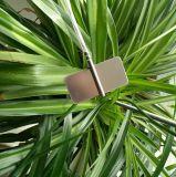 叶面温度传感器 叶片温度变送器探头