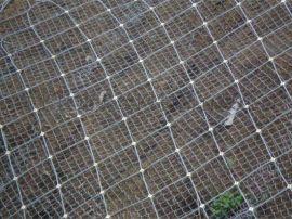 高速边坡防护网 高速边坡防护网