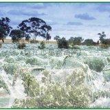 防鸟网池塘养殖天网尼龙防鸟网