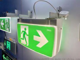 澳大利亚市场SAA认证防水LED应急灯安全出口标志