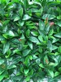 重慶阻燃模擬植物牆供應-防火綠植定製