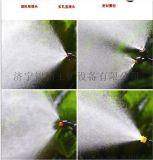 供应背负式的农药喷雾机  为民除害的农药打药机