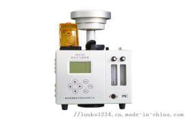 LB-6120(A)雙路大氣采樣器(加熱轉子)